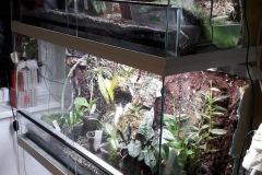 orchidario-3